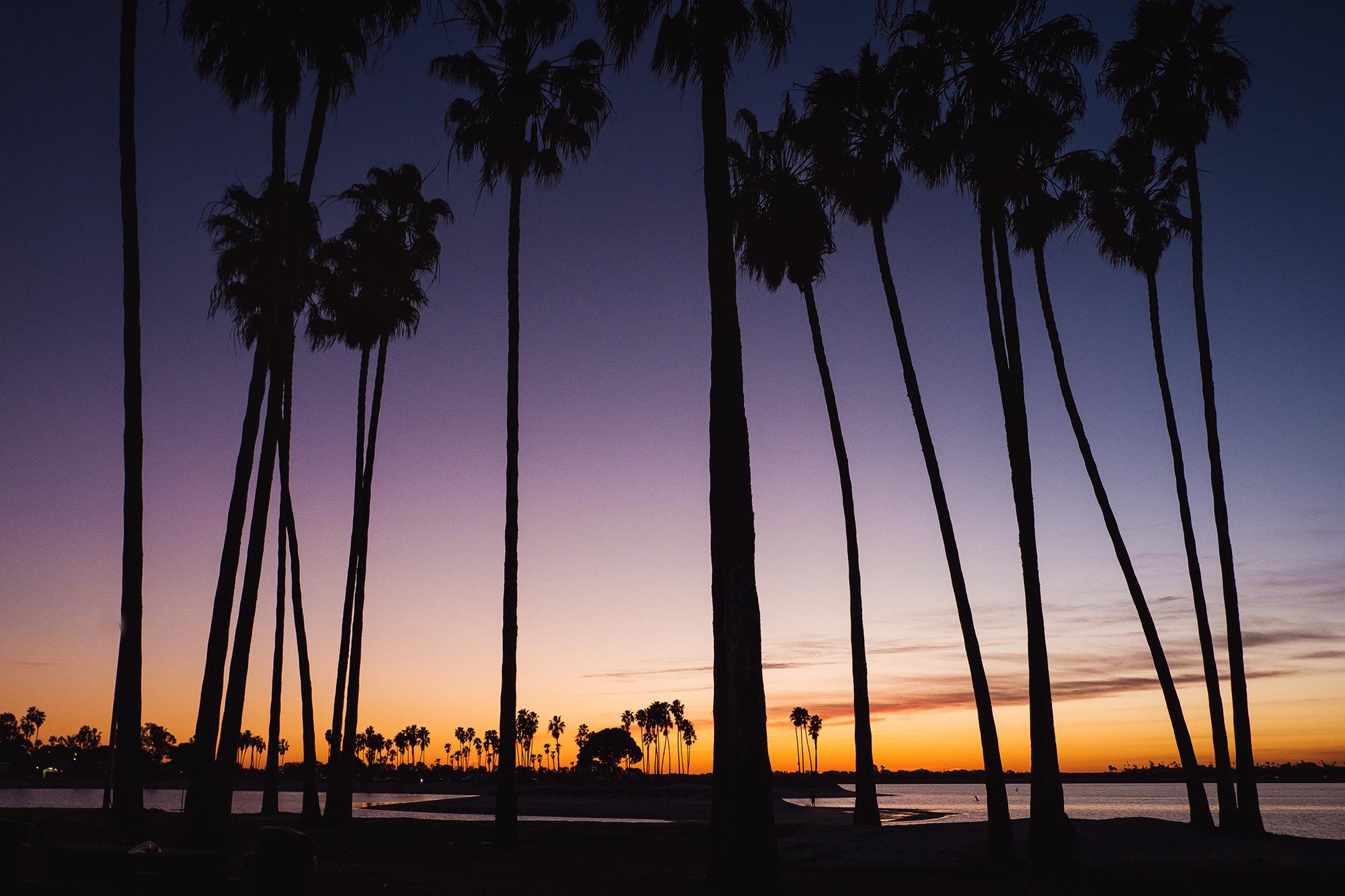 San Diego 2017-82 resize.jpg