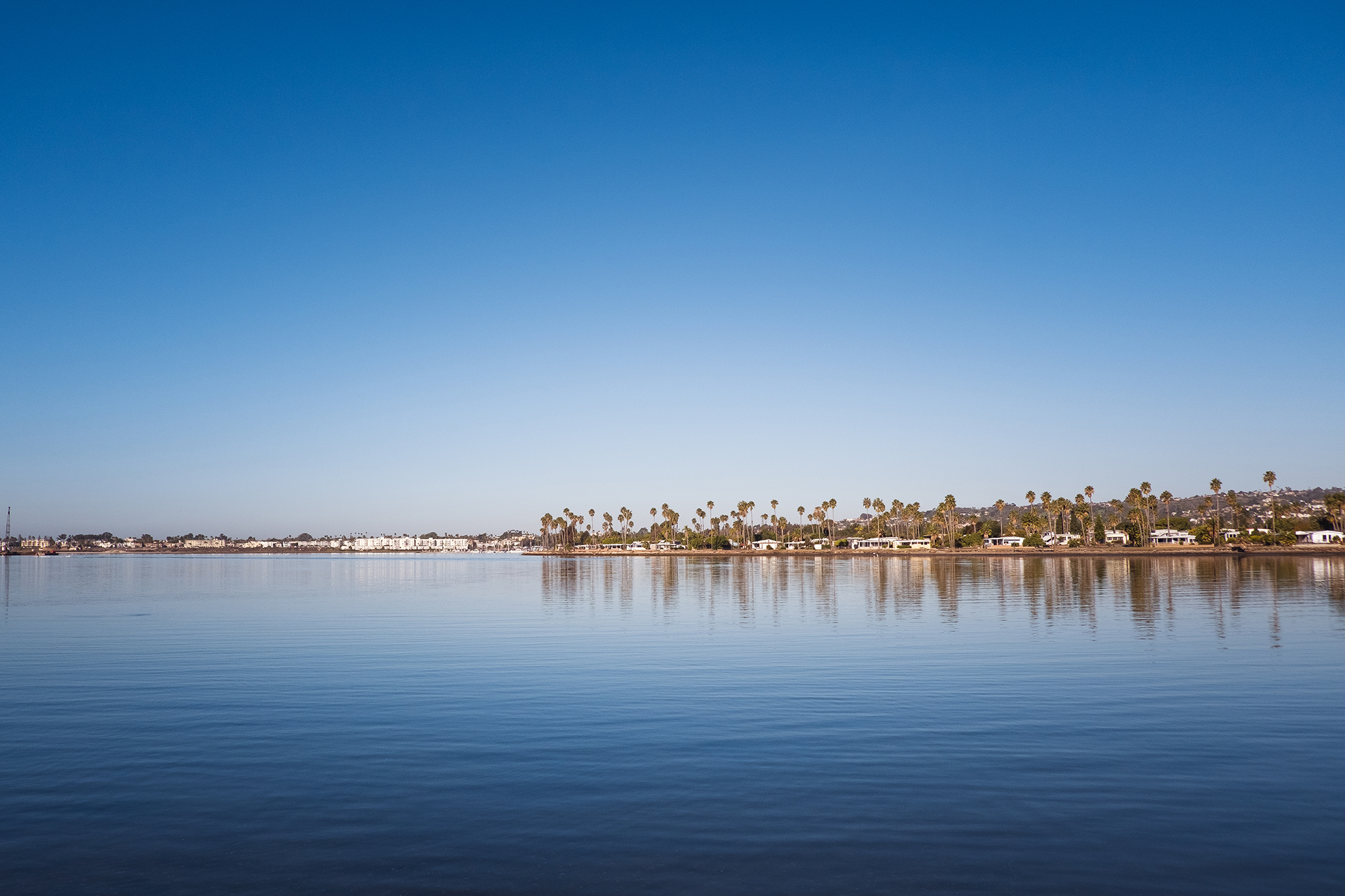 San Diego 2017-363 resize.jpg