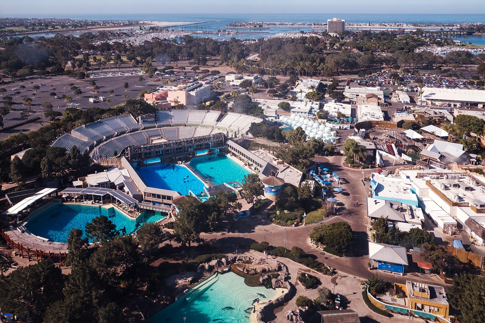 San Diego 2017-393 resize.jpg