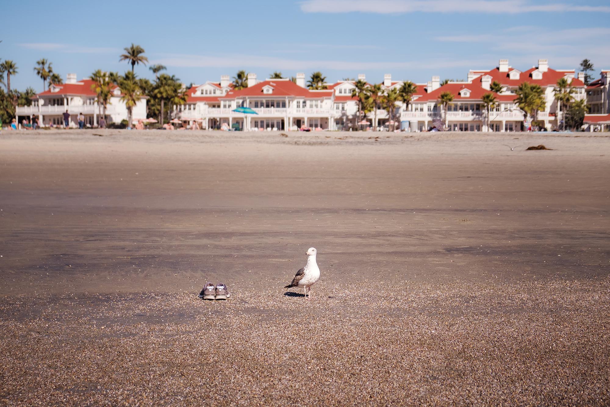 San Diego 2017-935 resize.jpg