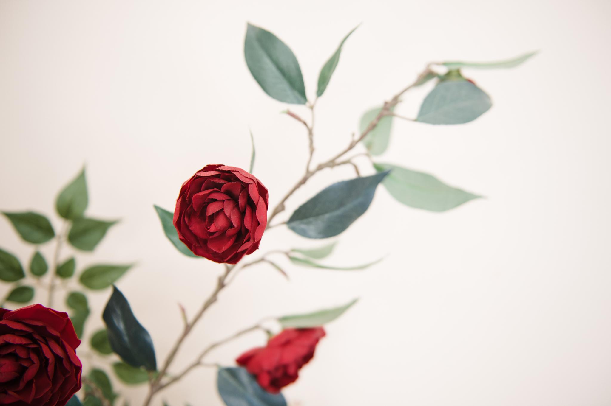 Beauty_and_Life_Captured_Athena_Wedding-100.jpg