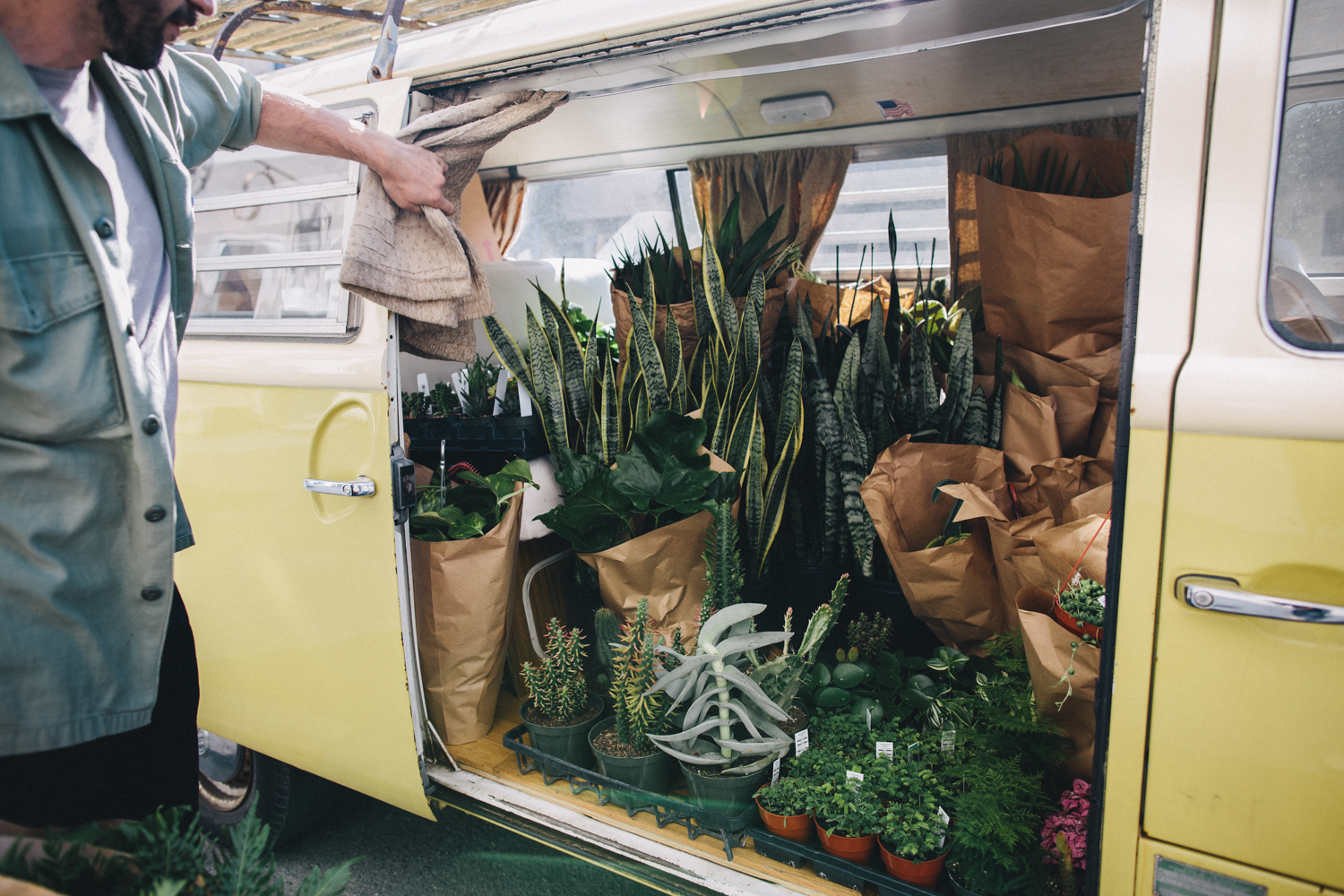 Plants and Friends San Franicsco Plant Shop Rachelle Derouin Photography-11.jpg