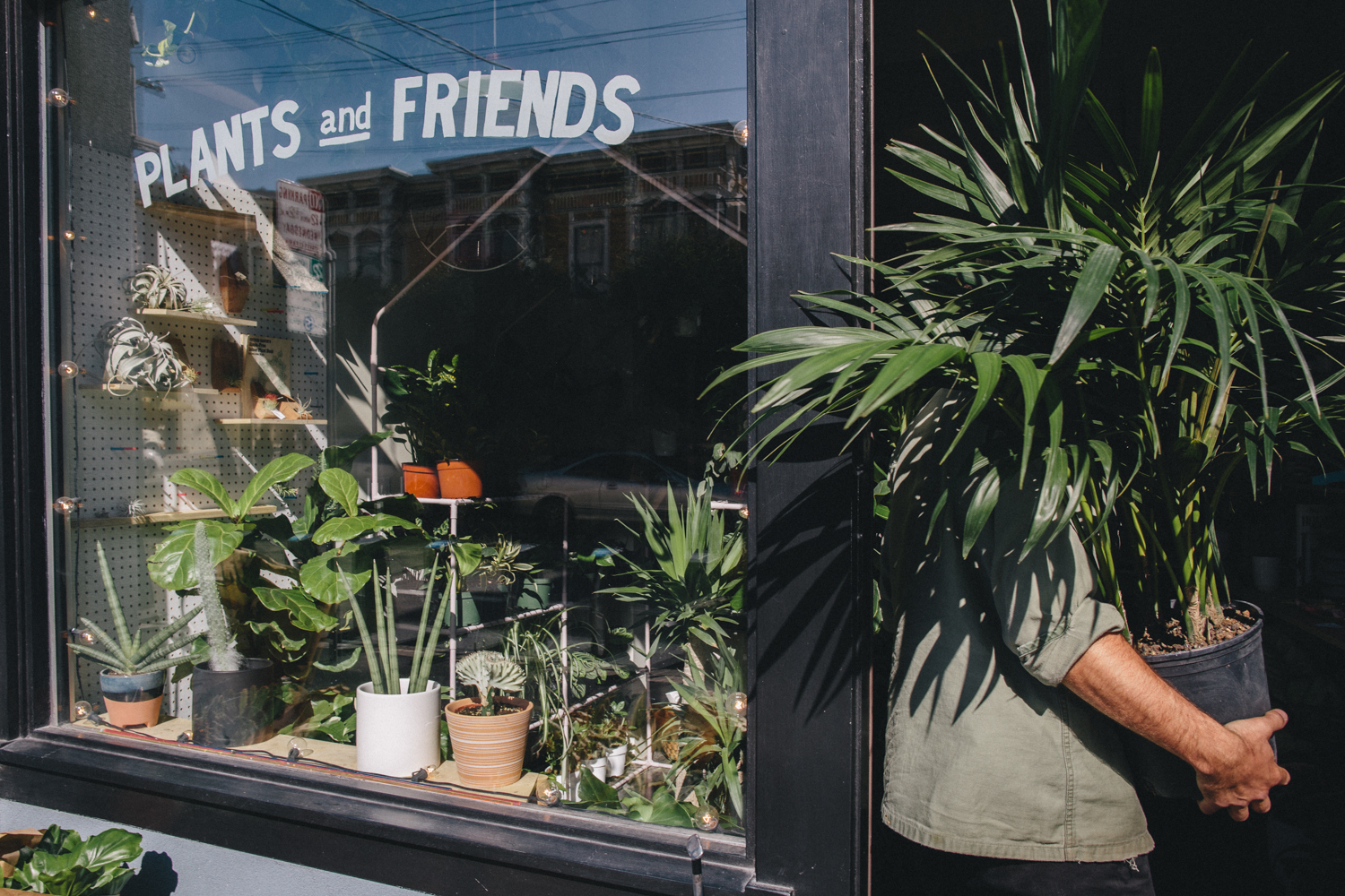 Plants and Friends San Franicsco Plant Shop Rachelle Derouin Photography-14.jpg