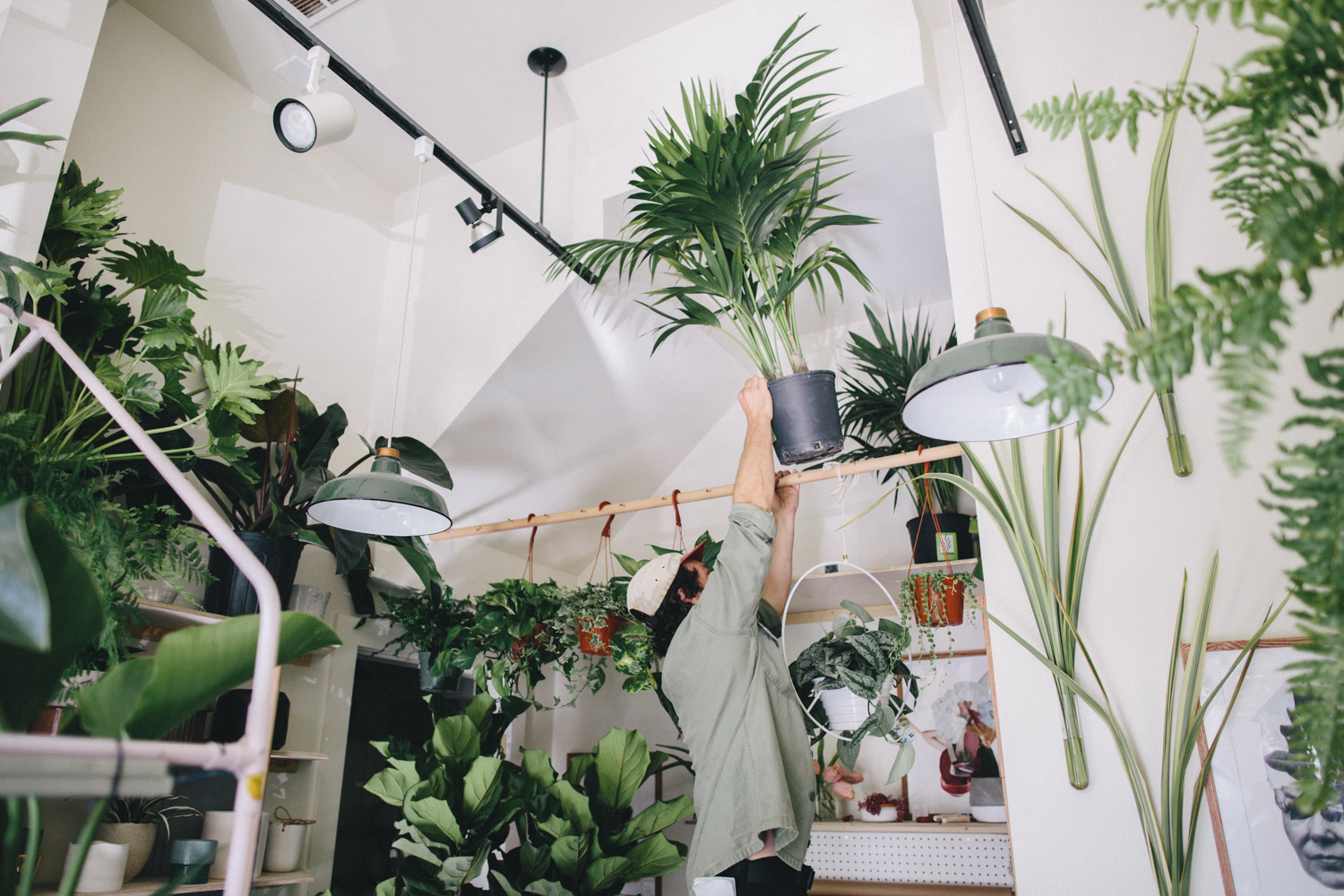 Plants and Friends San Franicsco Plant Shop Rachelle Derouin Photography-15.jpg