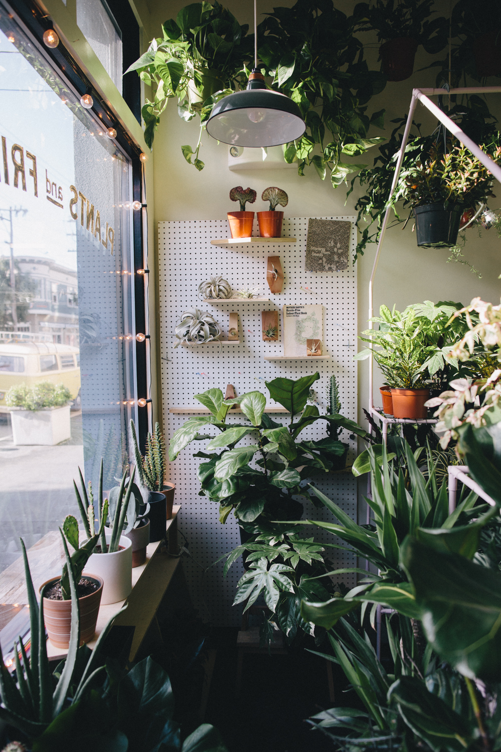 Plants and Friends San Franicsco Plant Shop Rachelle Derouin Photography-28.jpg