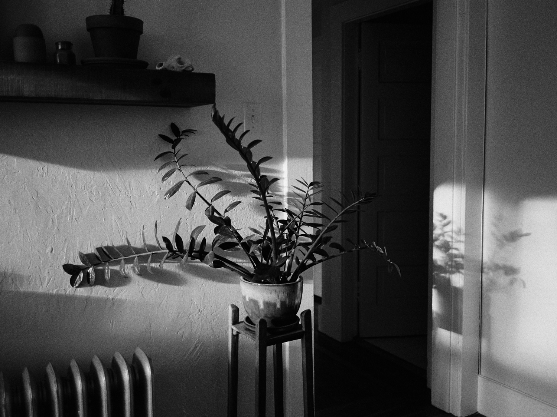 Rachelle Derouin Photography-218.jpg