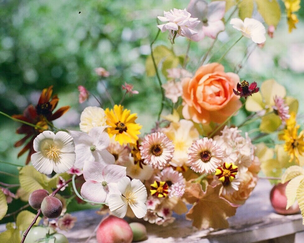 alice beasley cutting garden flowers