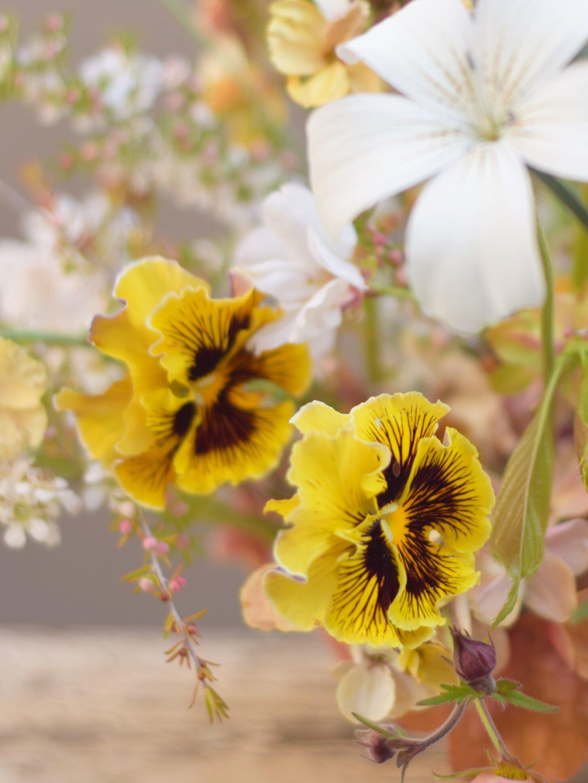 Alice Beasley Floral workshops blue mountains. Sydney wedding florist