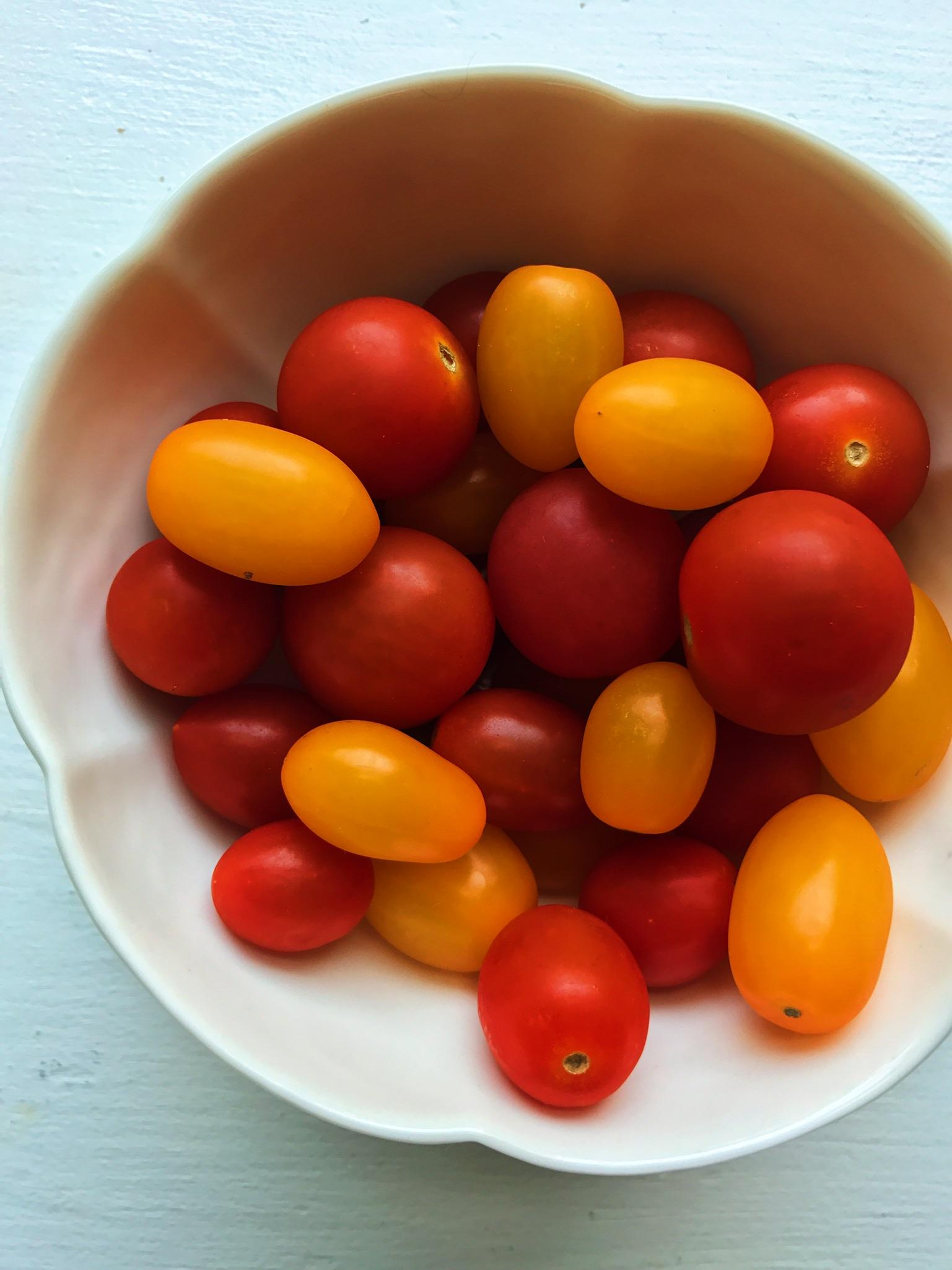 tomato 1.JPG