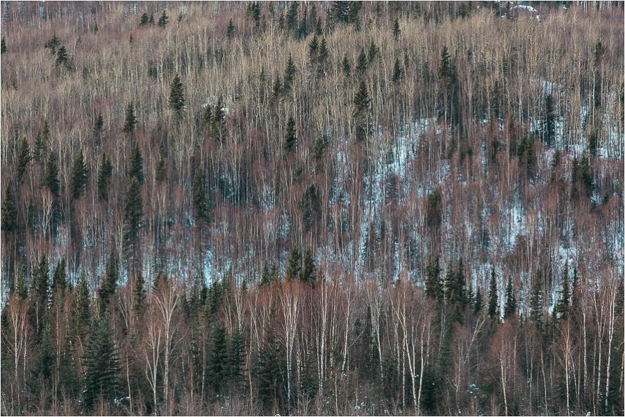 Alaska Photography_Northern Lights Photography_Travel Photography-20