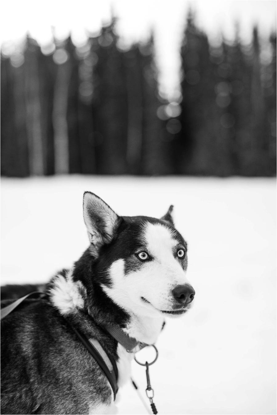 Alaska Photography_Northern Lights Photography_Travel Photography-33
