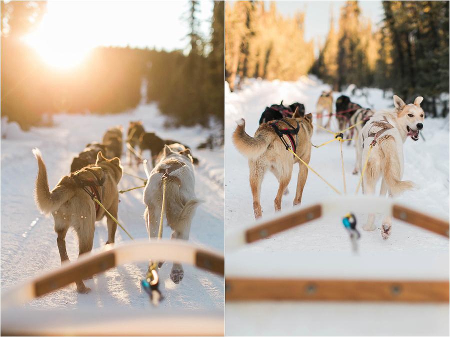 Alaska Photography_Northern Lights Photography_Travel Photography-34