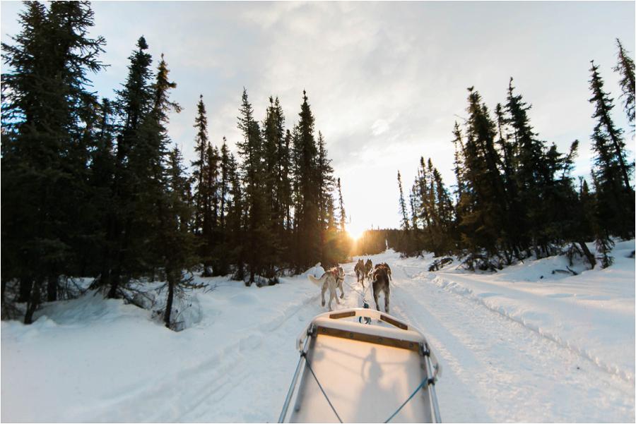Alaska Photography_Northern Lights Photography_Travel Photography-41
