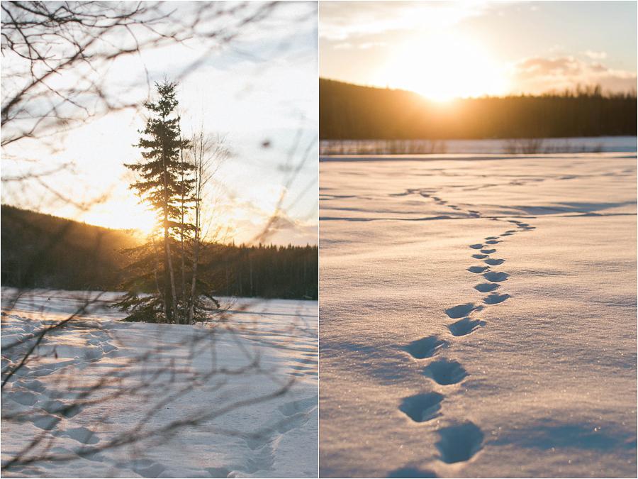 Alaska Photography_Northern Lights Photography_Travel Photography-7