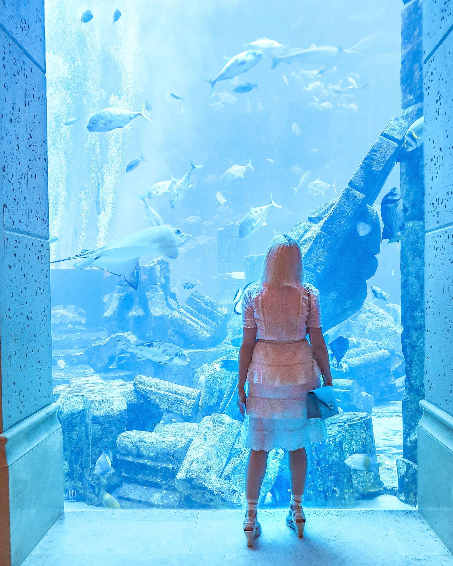The Atlantis hotel aquarium