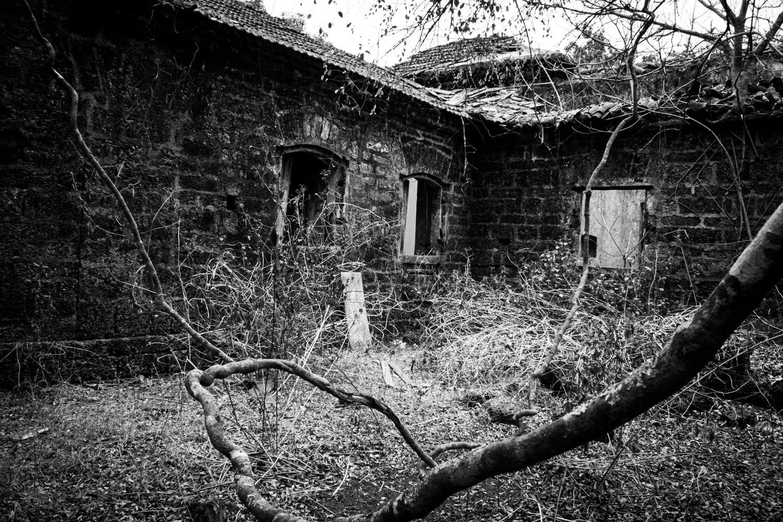Houses-02.jpg