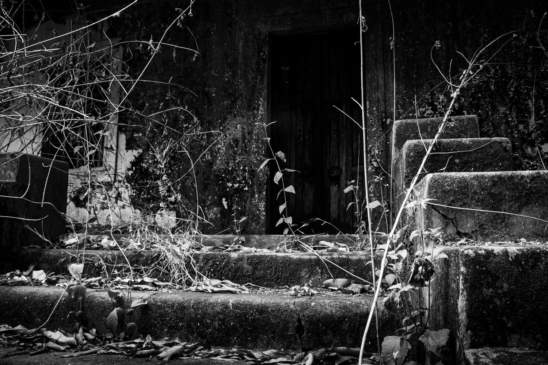 Houses-04.jpg