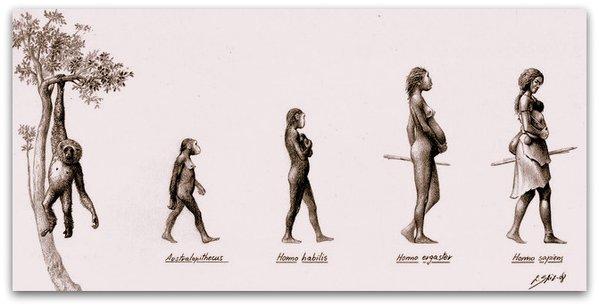 "Illustration Credit: ""Evolution of Women"" by Eduardo Saiz Alonso"