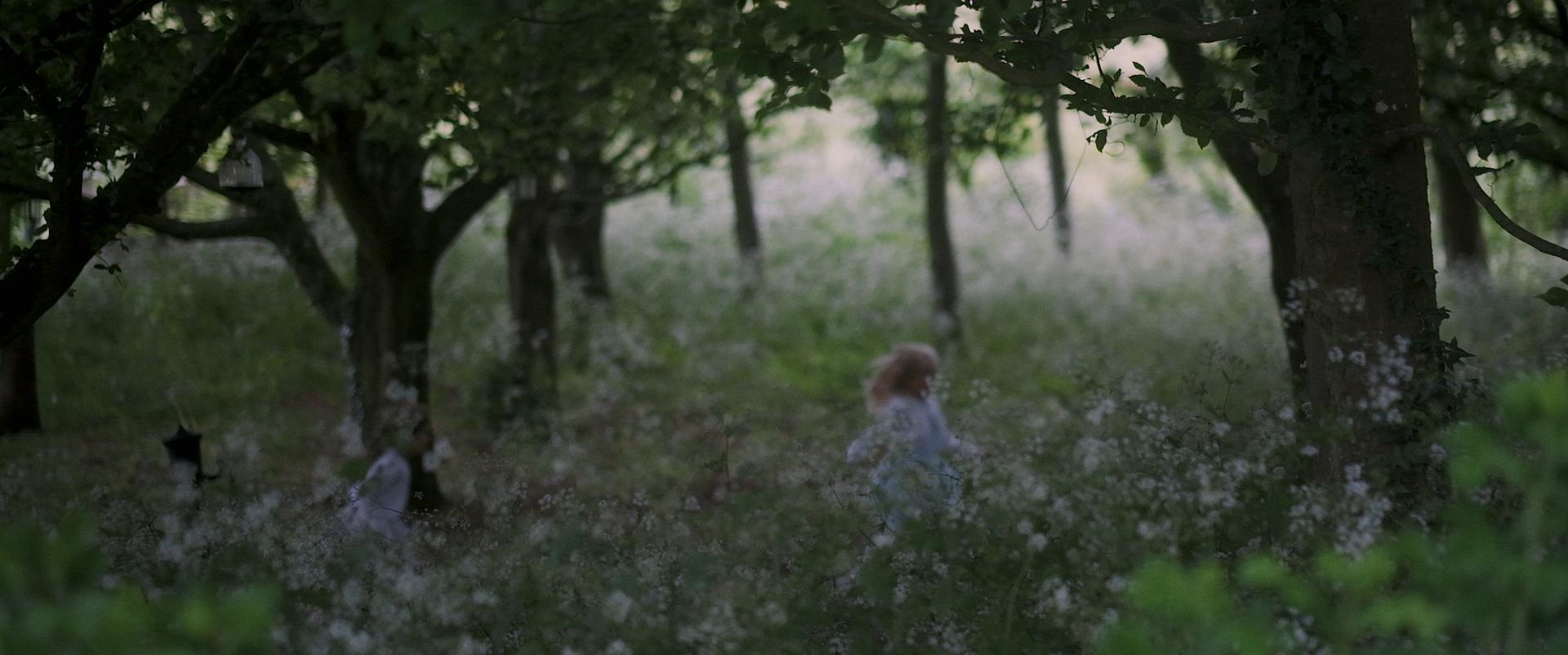 Trailer.00_03_26_23.Still021.jpg