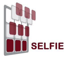 Logo SELFIE.jpg