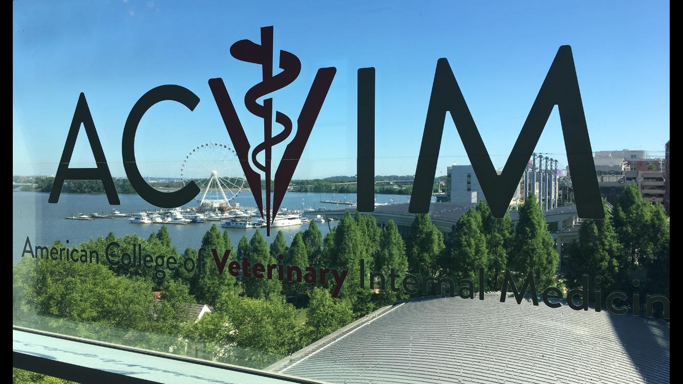 ACVIM Conference June 2017