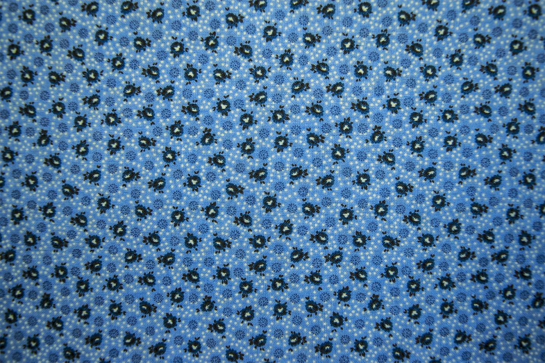 223_49484_blue