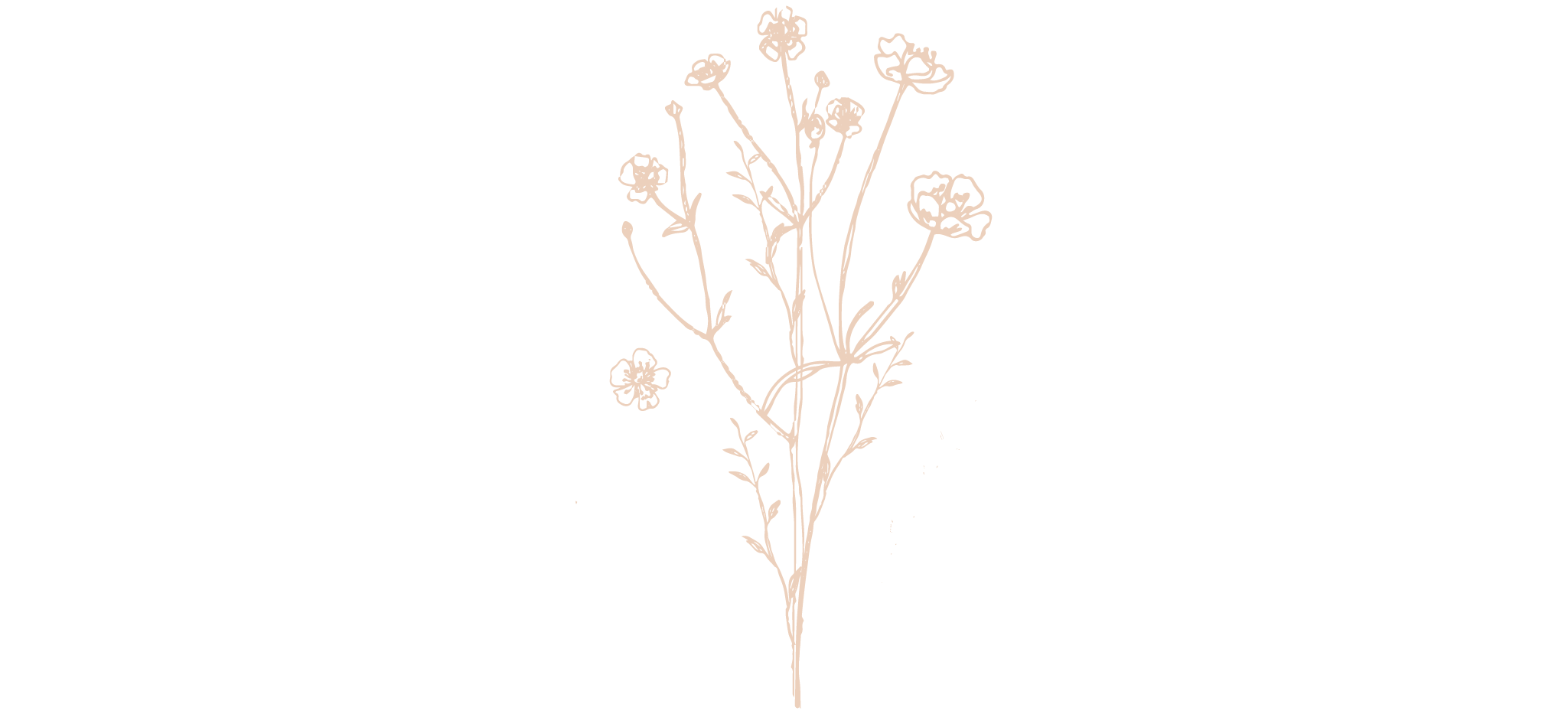 Flowers 2-02.png