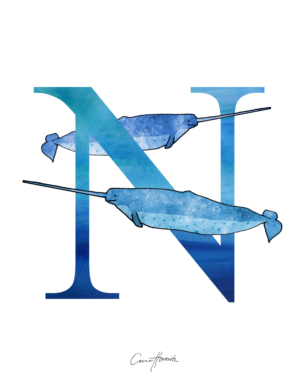 N Narwhal