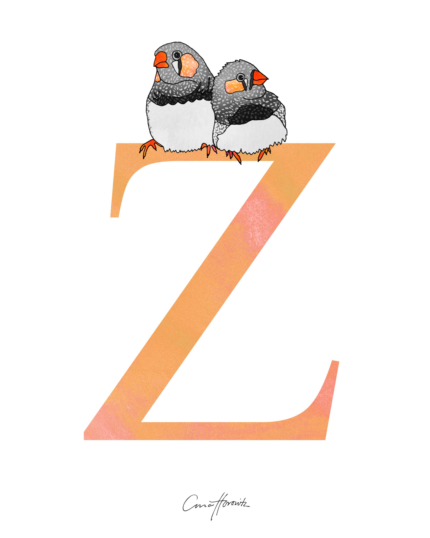 Z Zebra Finch