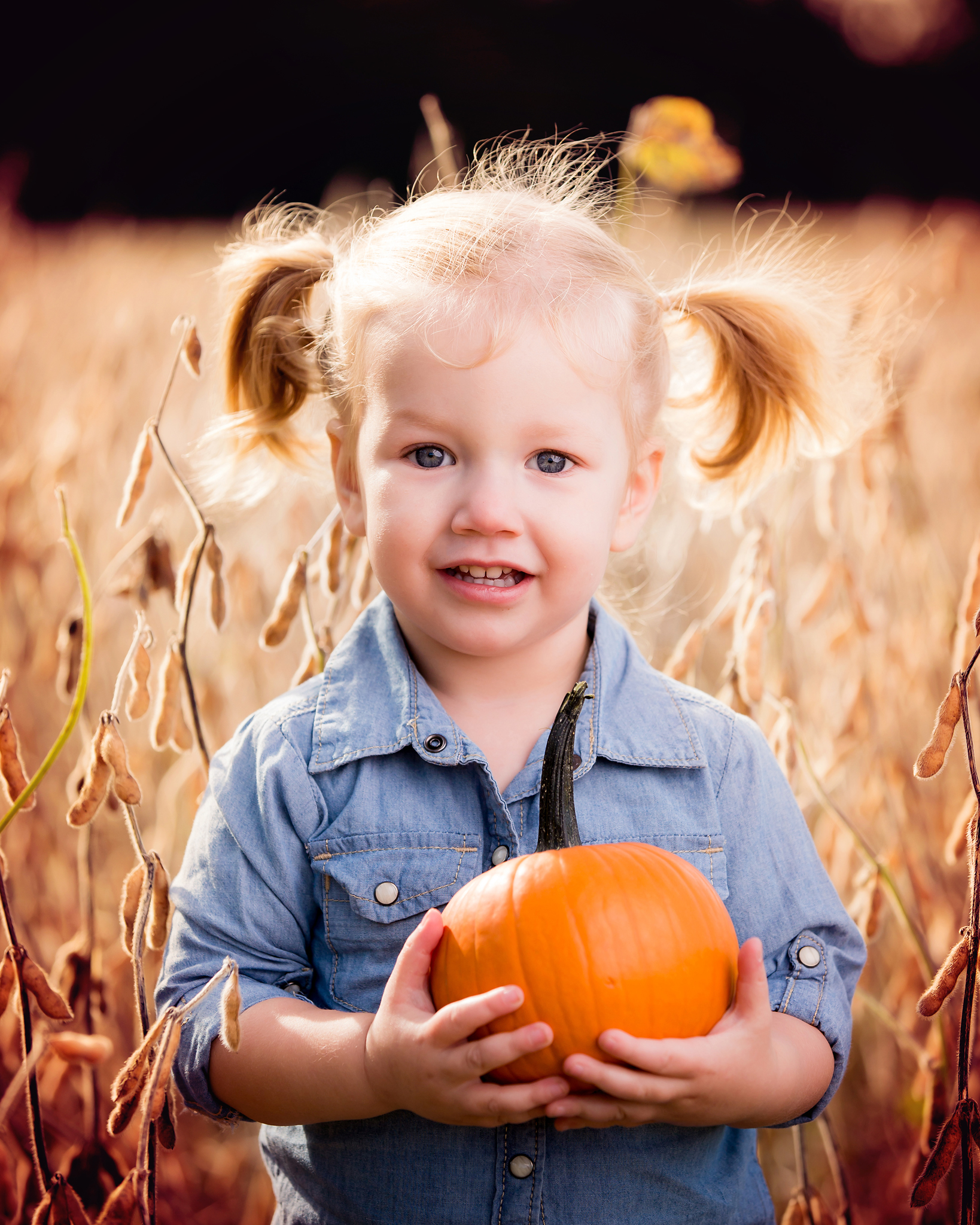 Toddler Photography in Akron