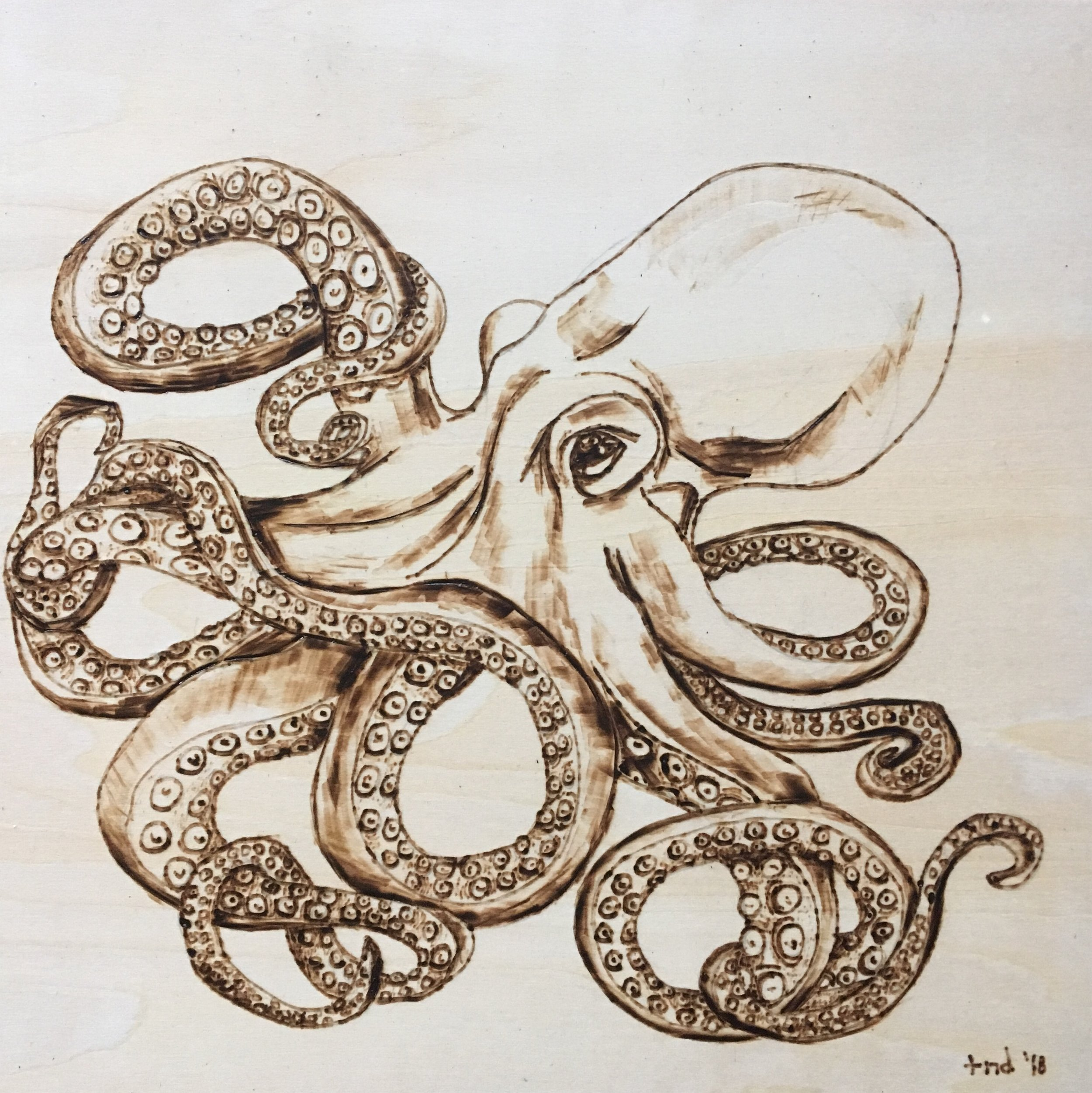 Octopus for Denny