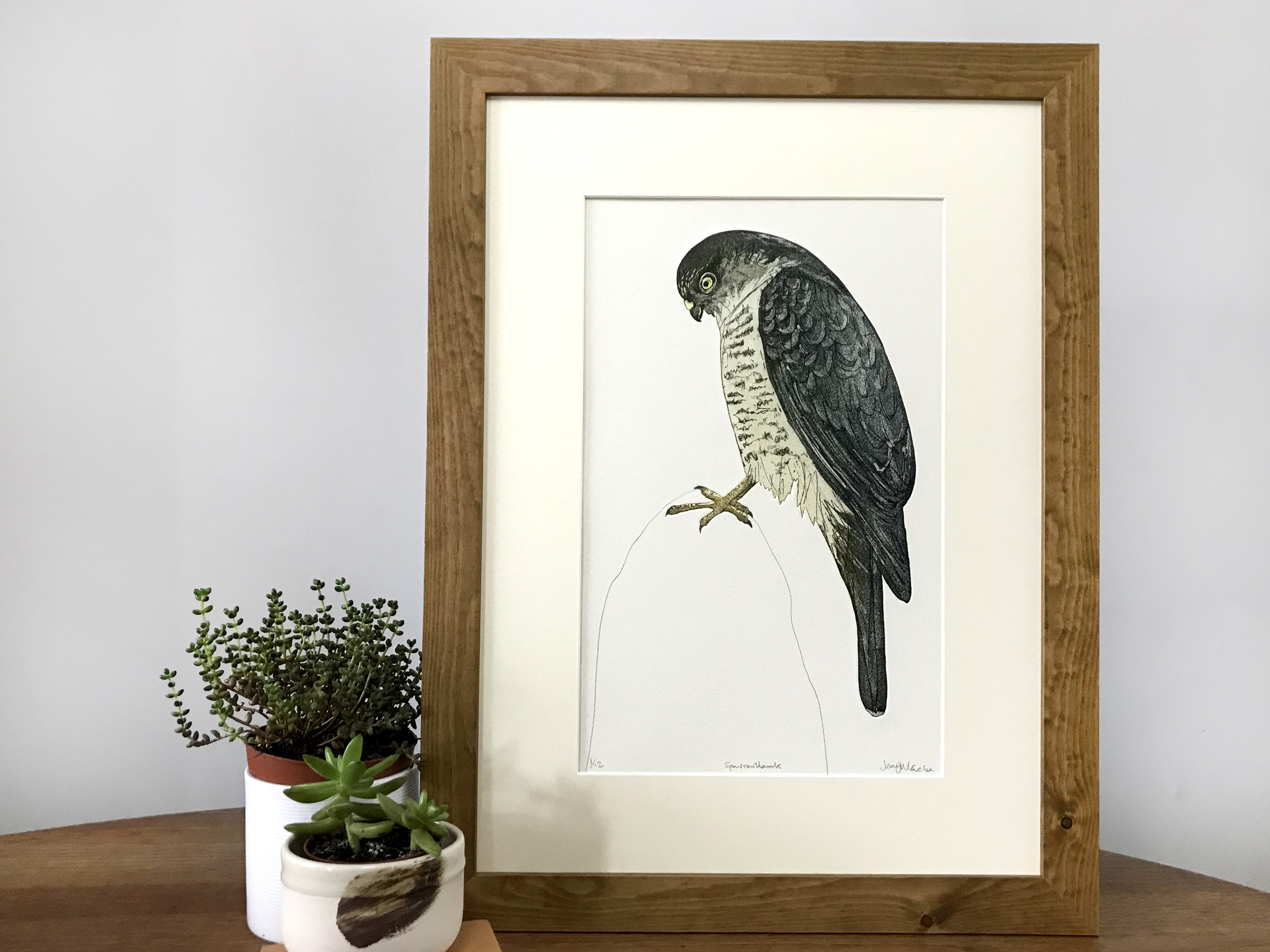 Sparrow hawk. 2018 Hand cut etching. Edition of 12. SOLD OUT