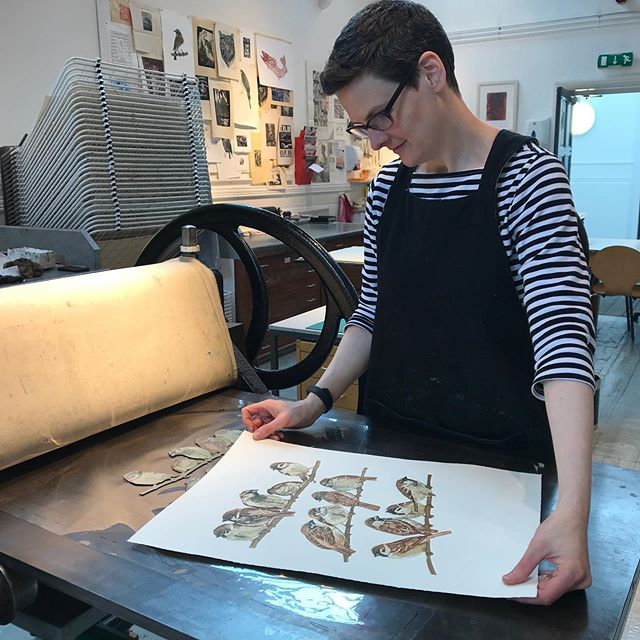 Me in the printroom - editioning the latest sparrows on a wire #printmakingprocess #printmakers #jennymccabe #birdsofinstagram #printmaking #sparrow #intaglio #intaglioprint #fineartprint #fineartprintmaking #etching