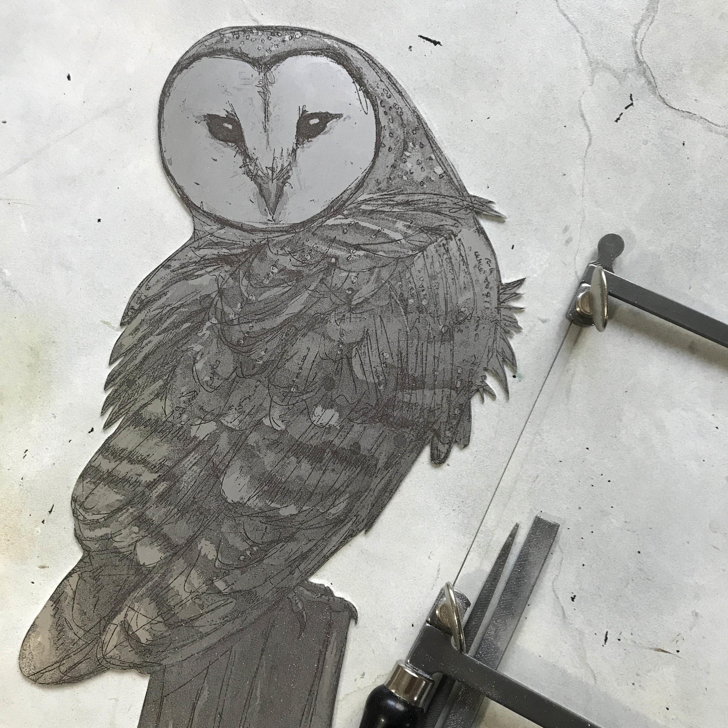 barn owl cut out small.jpg
