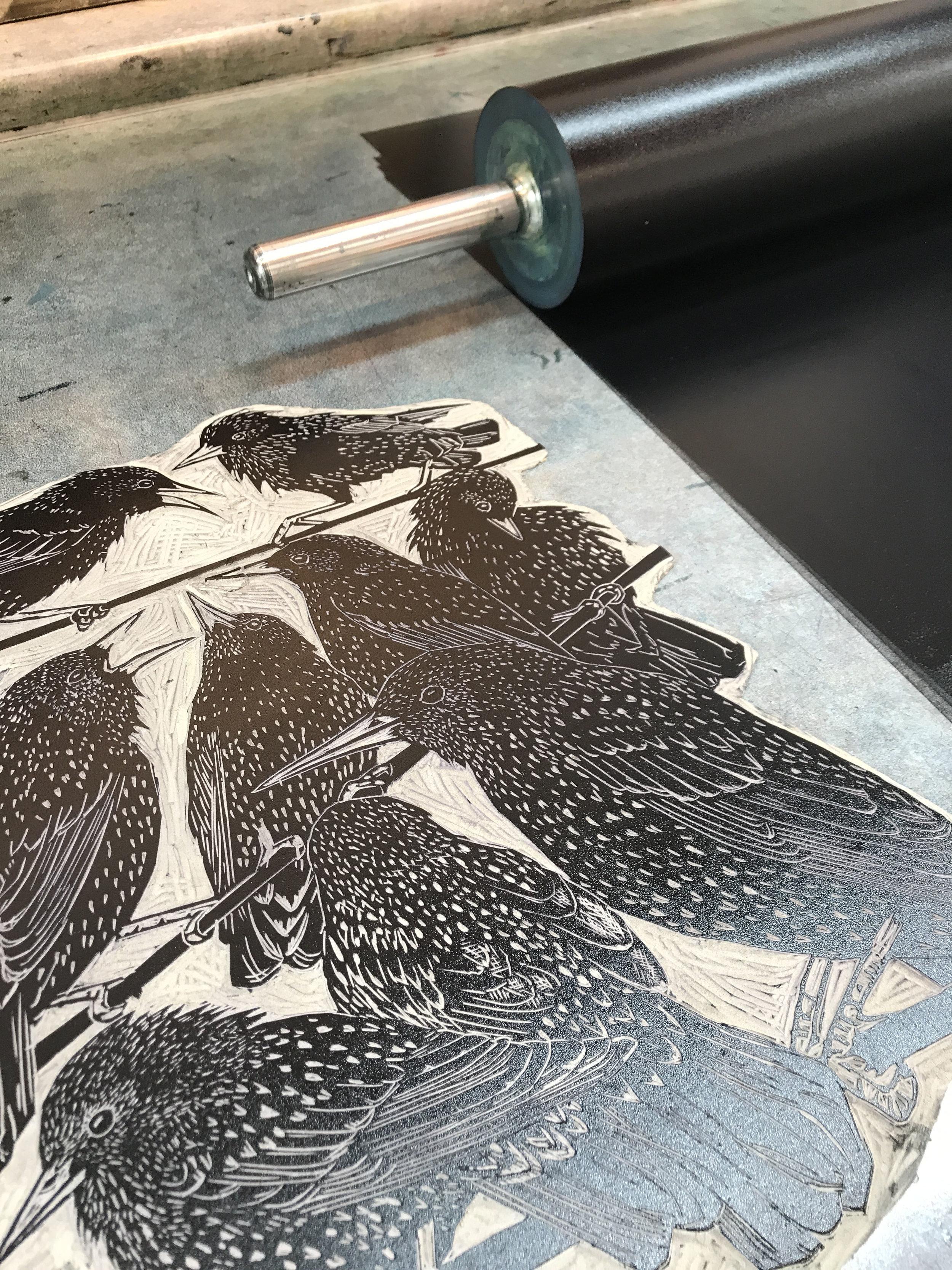 starling lino ink roller small.jpg