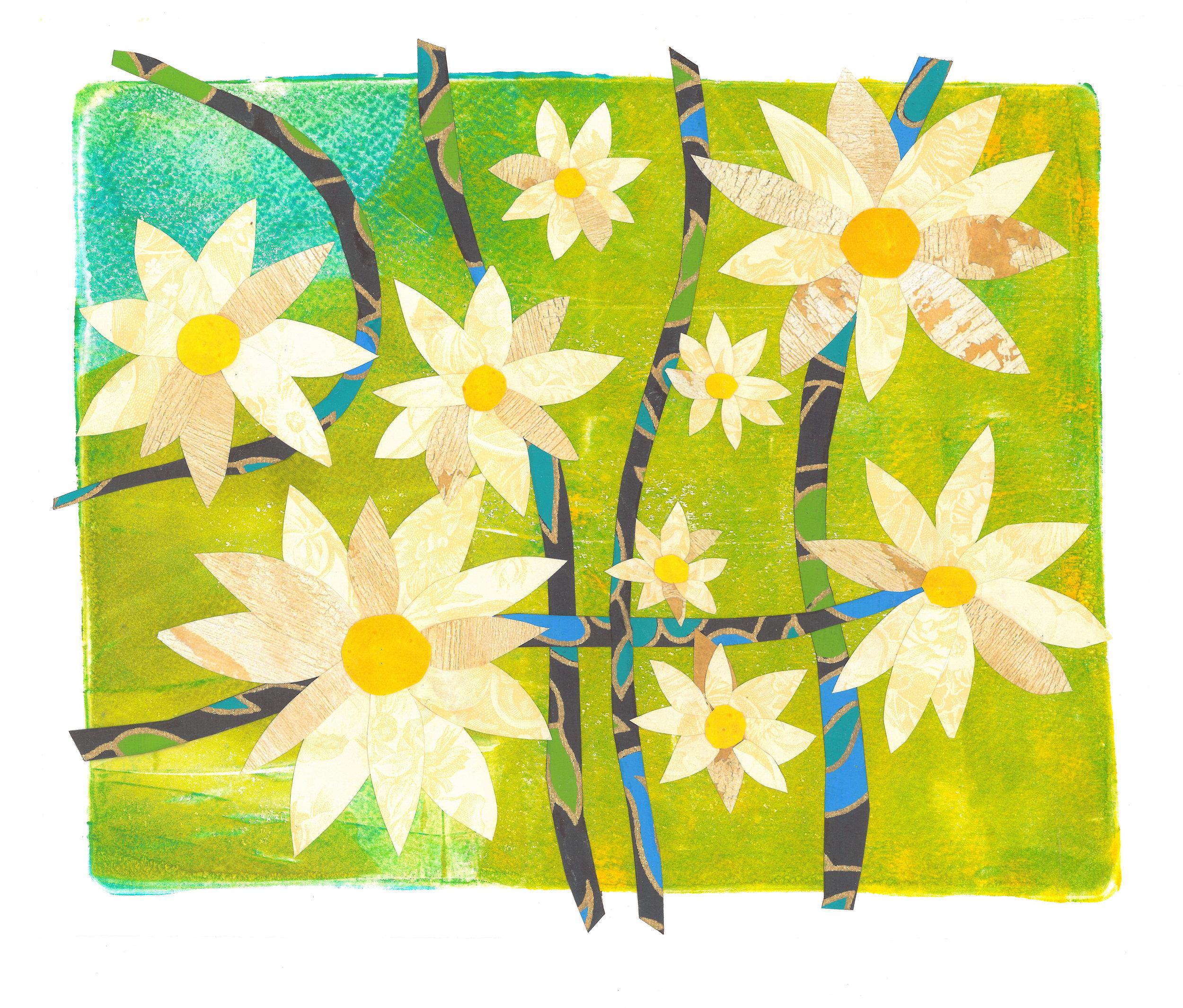 daises no. 2.jpg