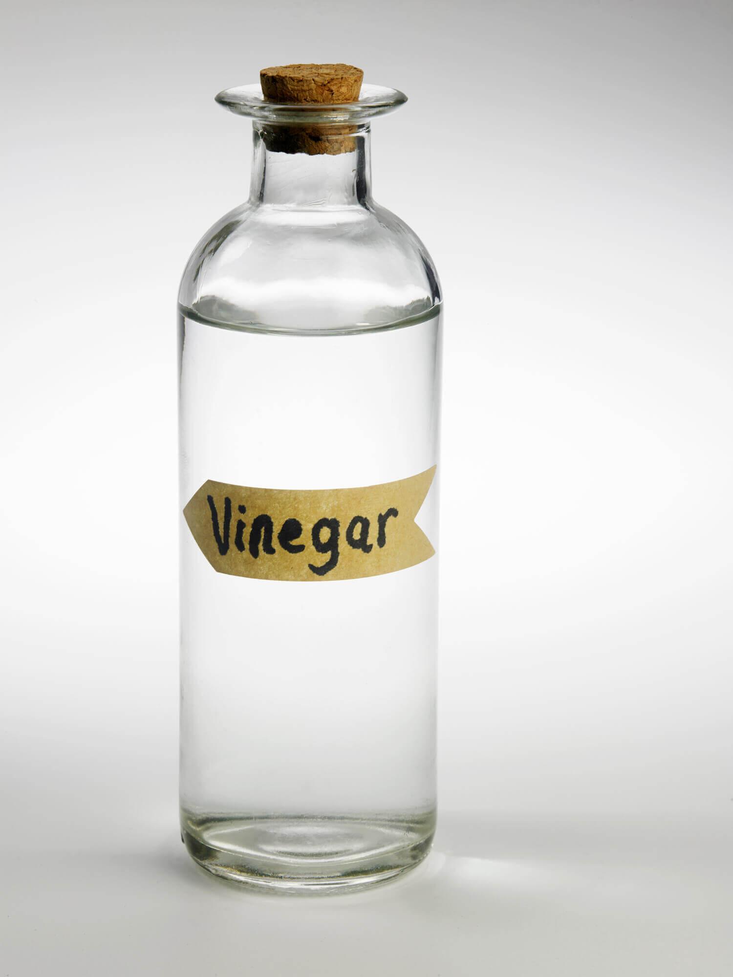 vinegar-613562262_1502x2002.jpeg