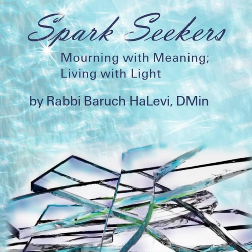 "Spark Seekers - Grief Counseling based on his book, ""Spark Seekers"""
