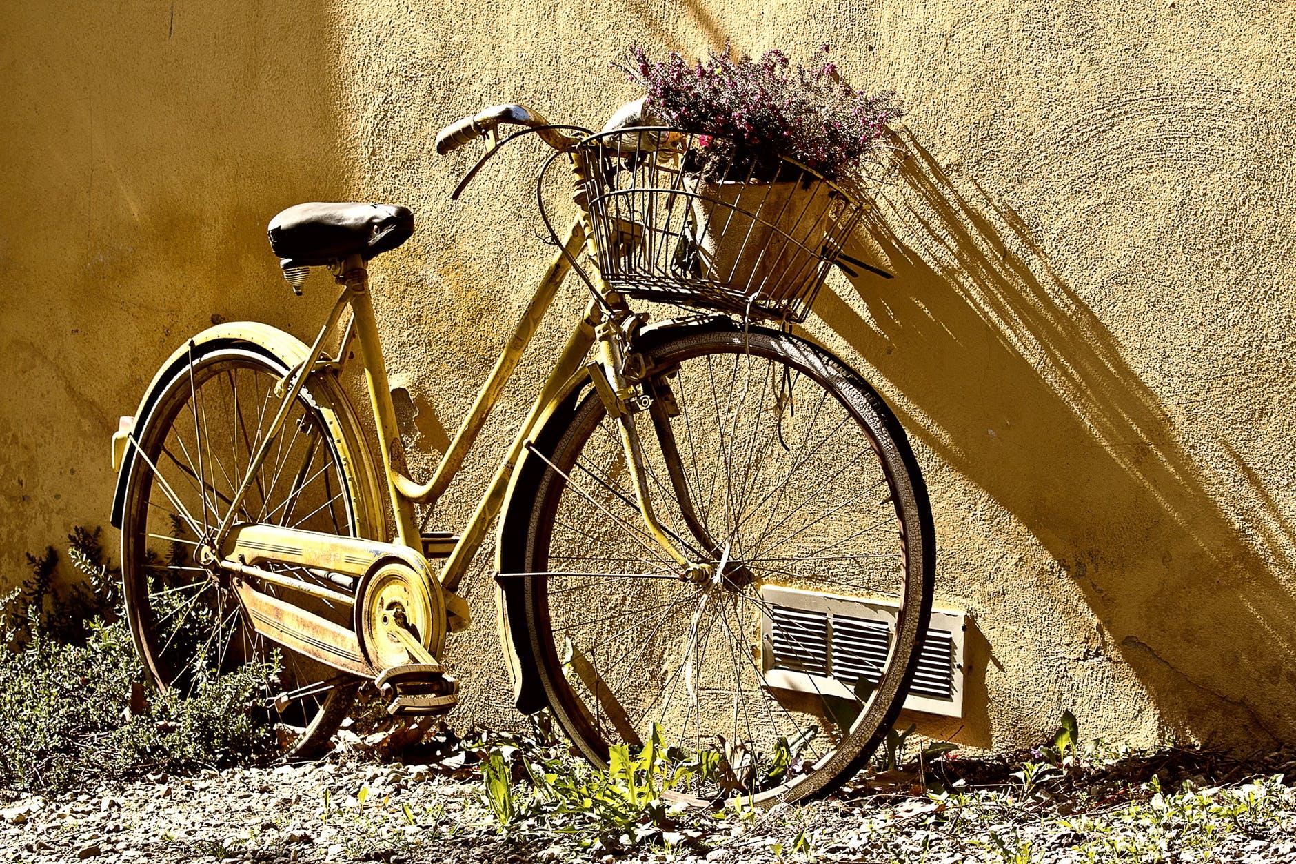 bike-bicycle-two-wheel-65689.jpg