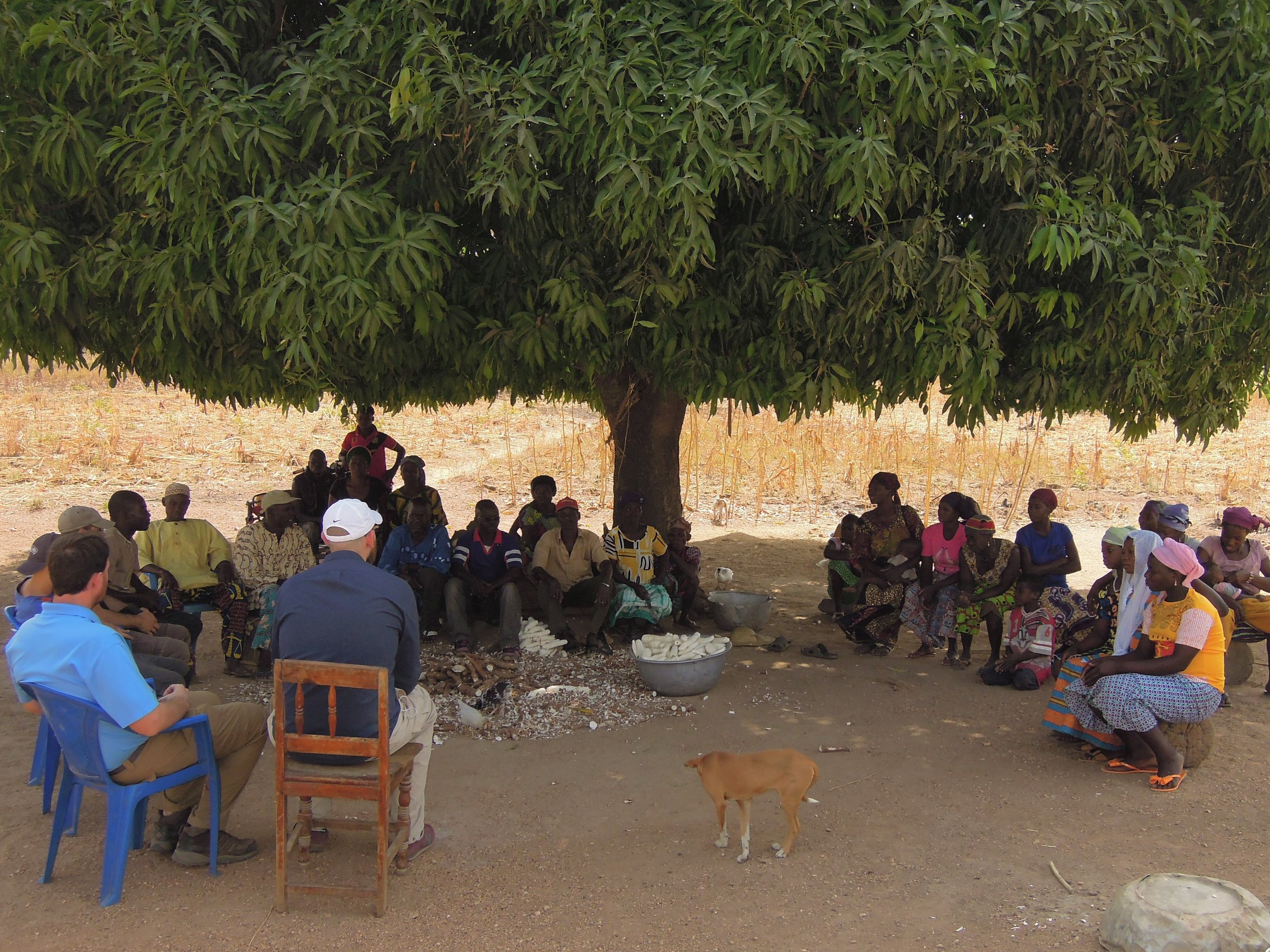 Meeting with Palabre 1 village in Togo to discuss their new well. Such meetings in hot locales often take place under the shade of large trees.