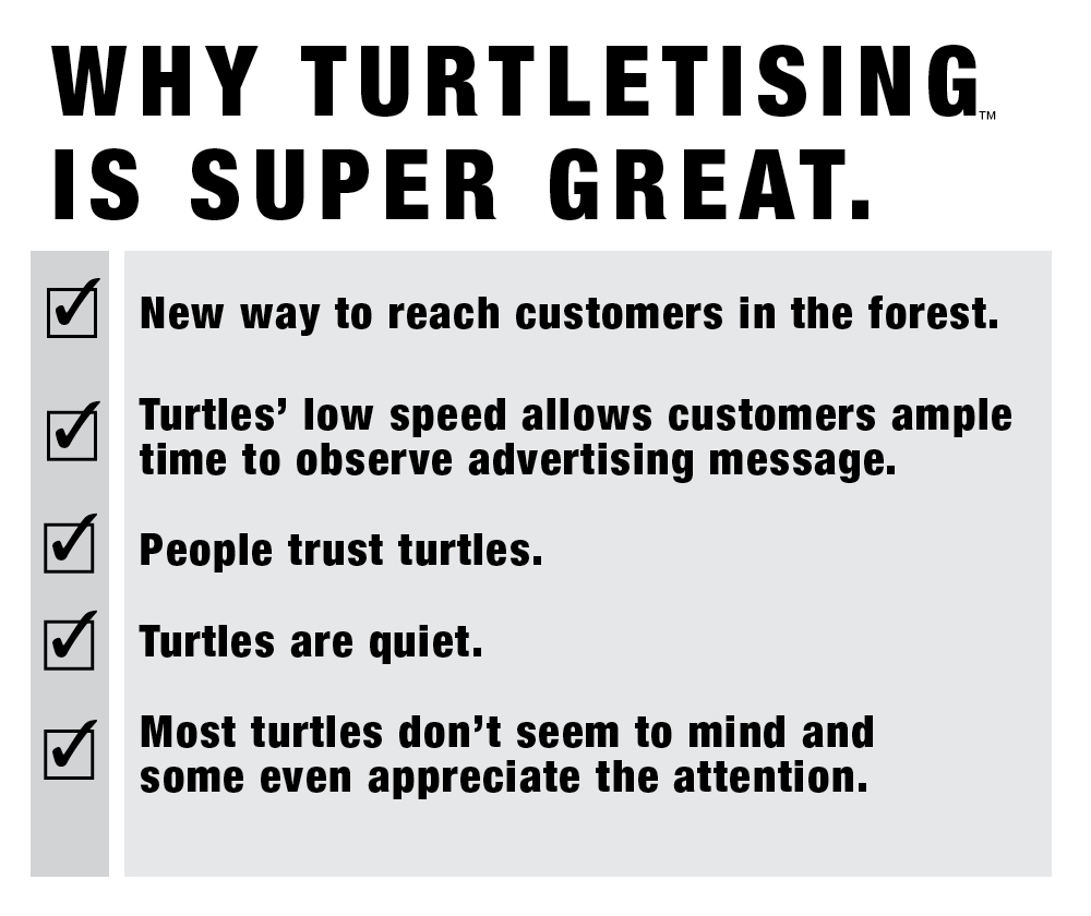 Why Turtletisingb.jpg