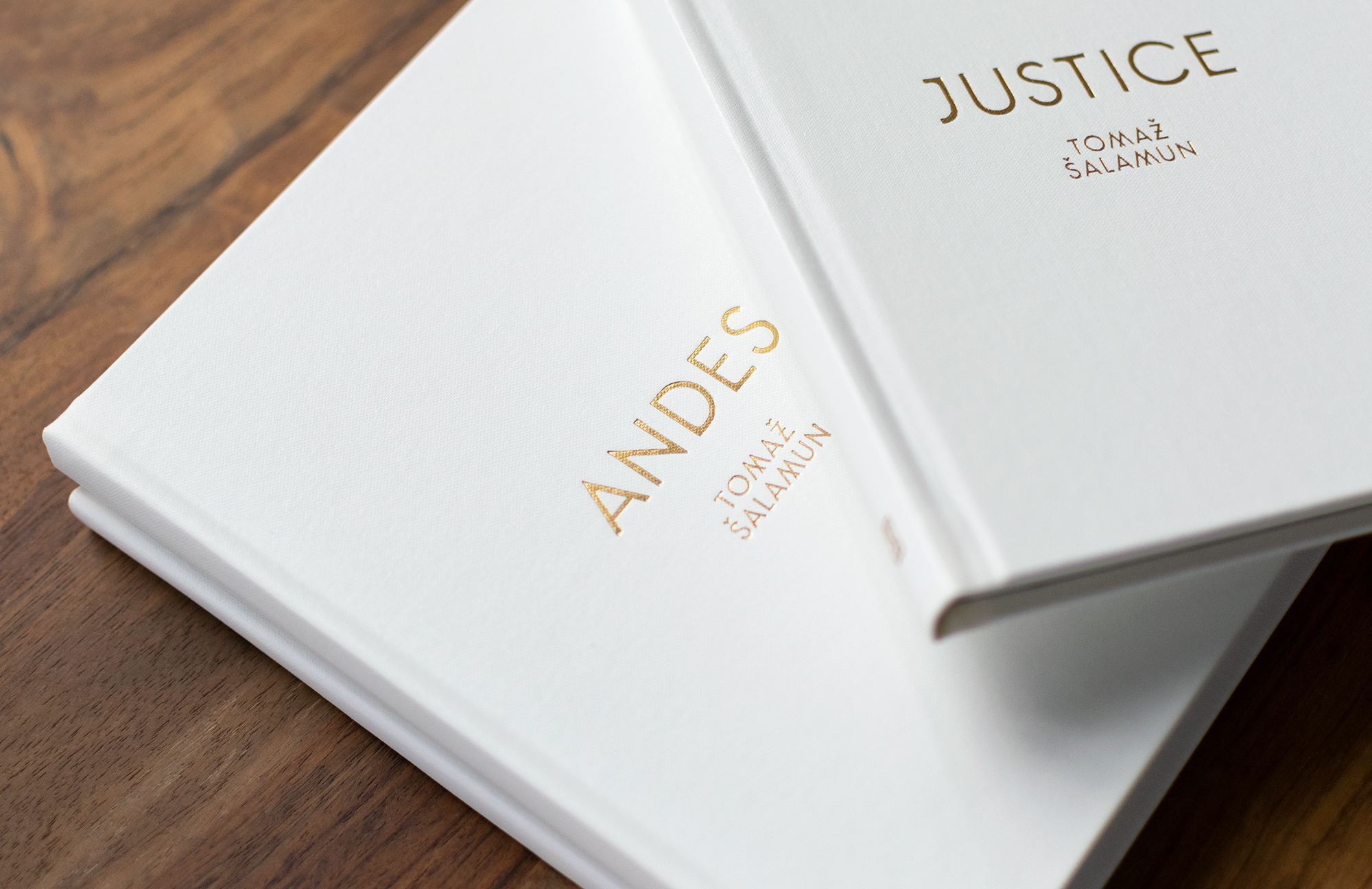 Detail of Andes & Justice by Tomaz Salamun. Gold foil on clothbound book. Custom typography by Abby Haddican Studio.