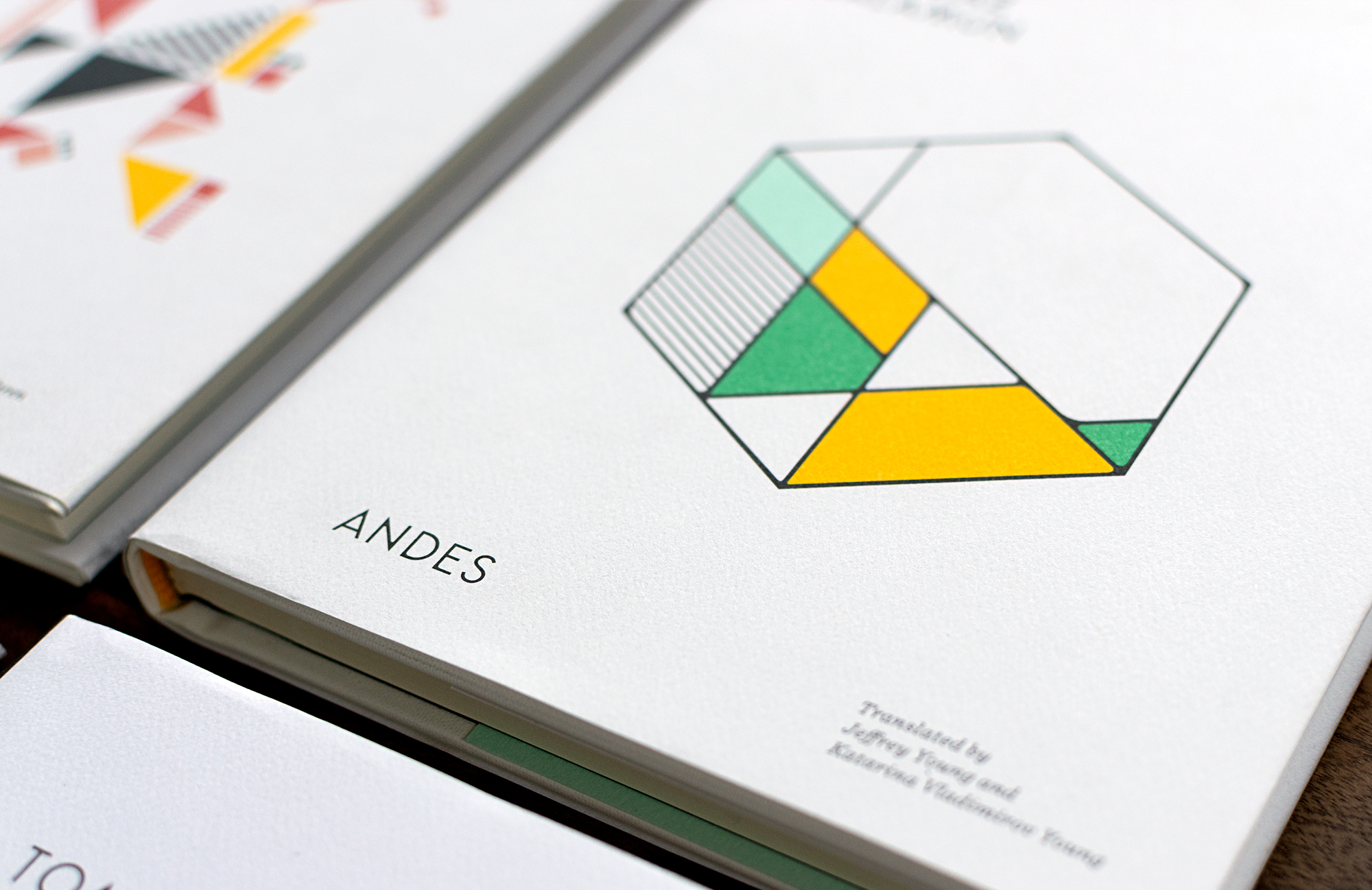Detail of  Andes by Tomaz Salamun,. Book cover design, illustration, and custom typography by Abby Haddican Studio.