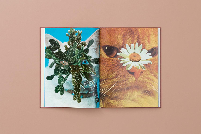 CATS_PLANTS_04-copy.jpg