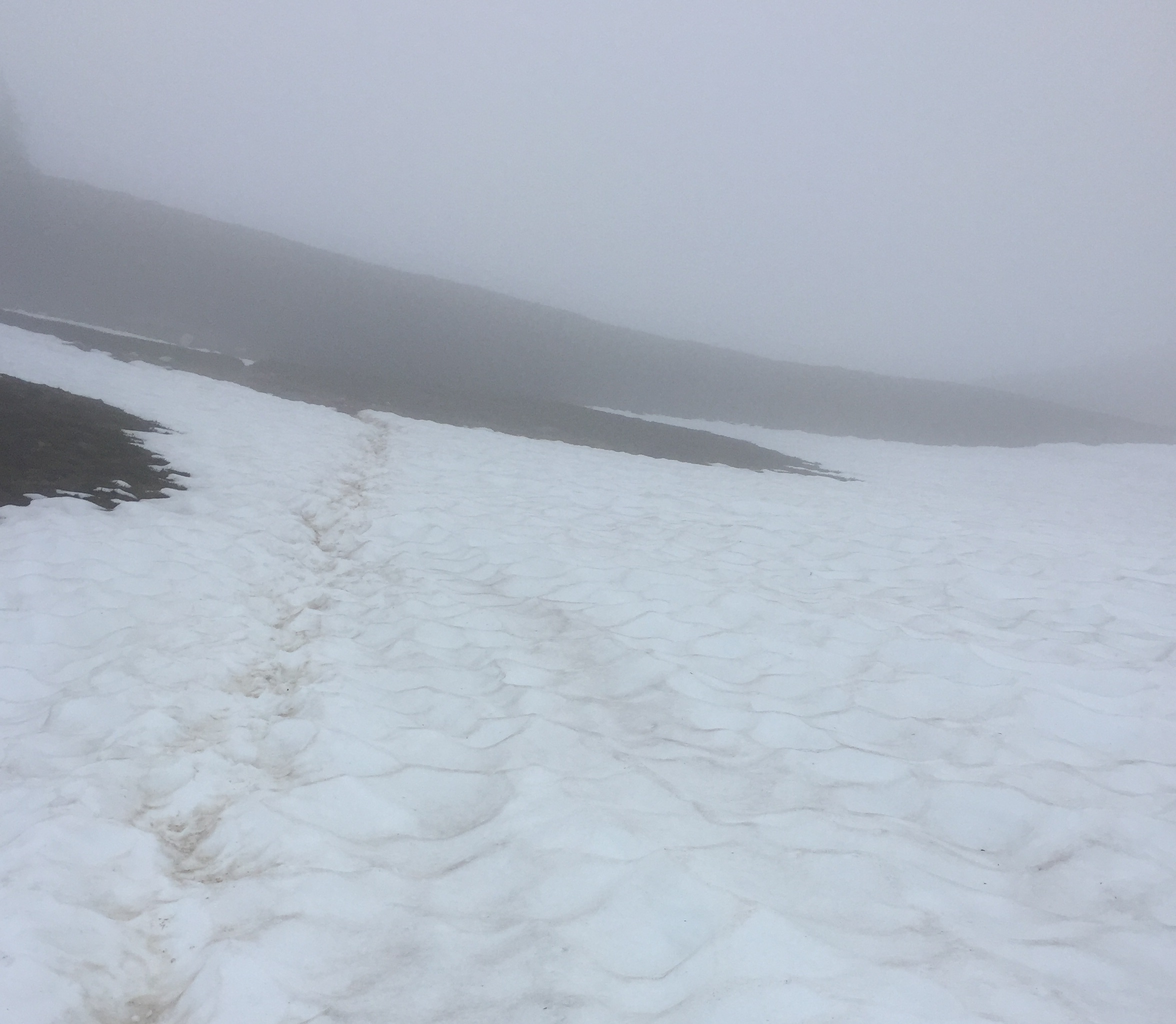 Clouds, fog, and late July snow in the Glacier Peak Wilderness - 2016