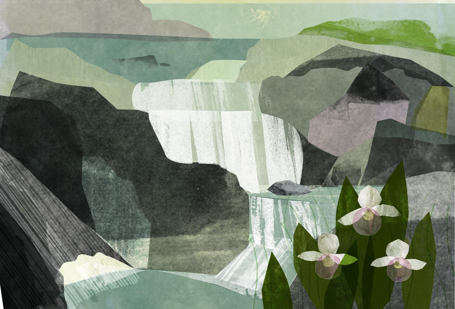 superior hiking trail postcard spring w bleed-01.jpg