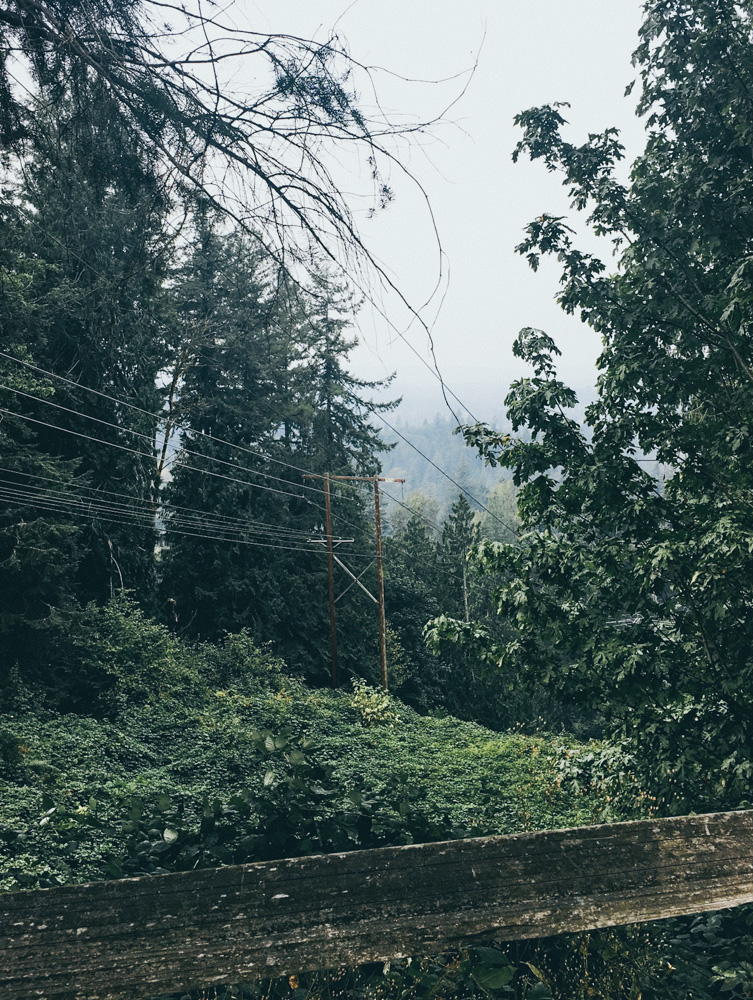 1104_Seattle_Lindsey-3890.jpg