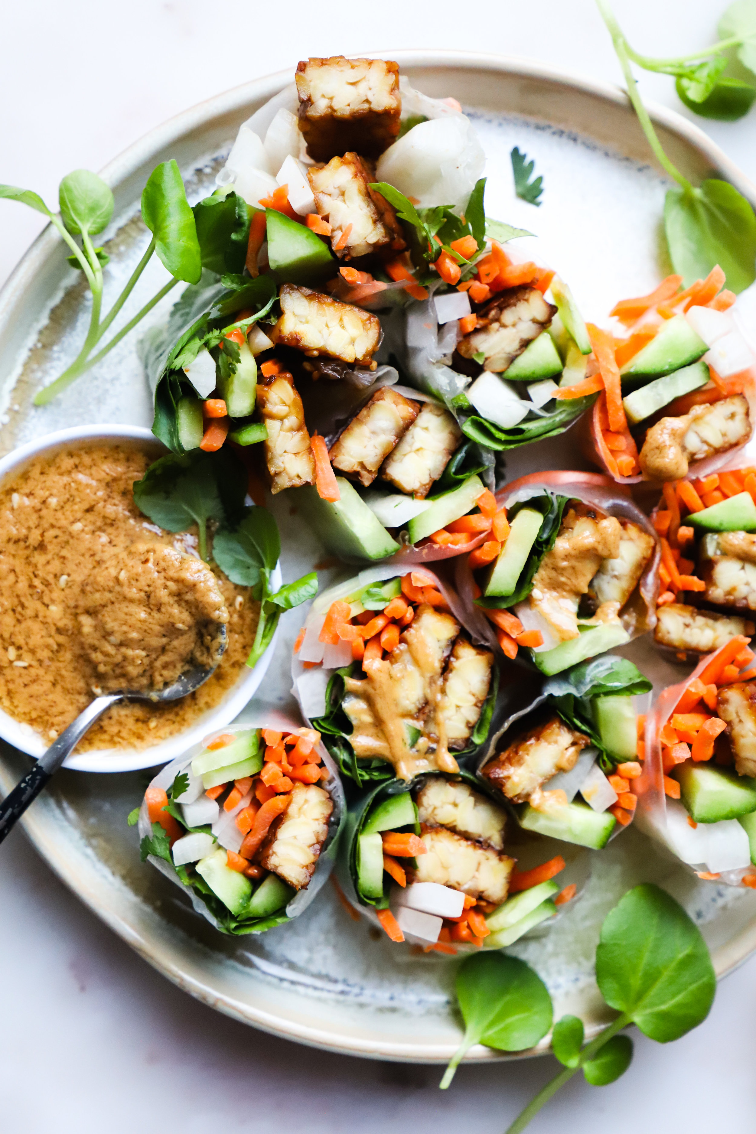 Tempeh Spring Rolls with Peanut Sauce