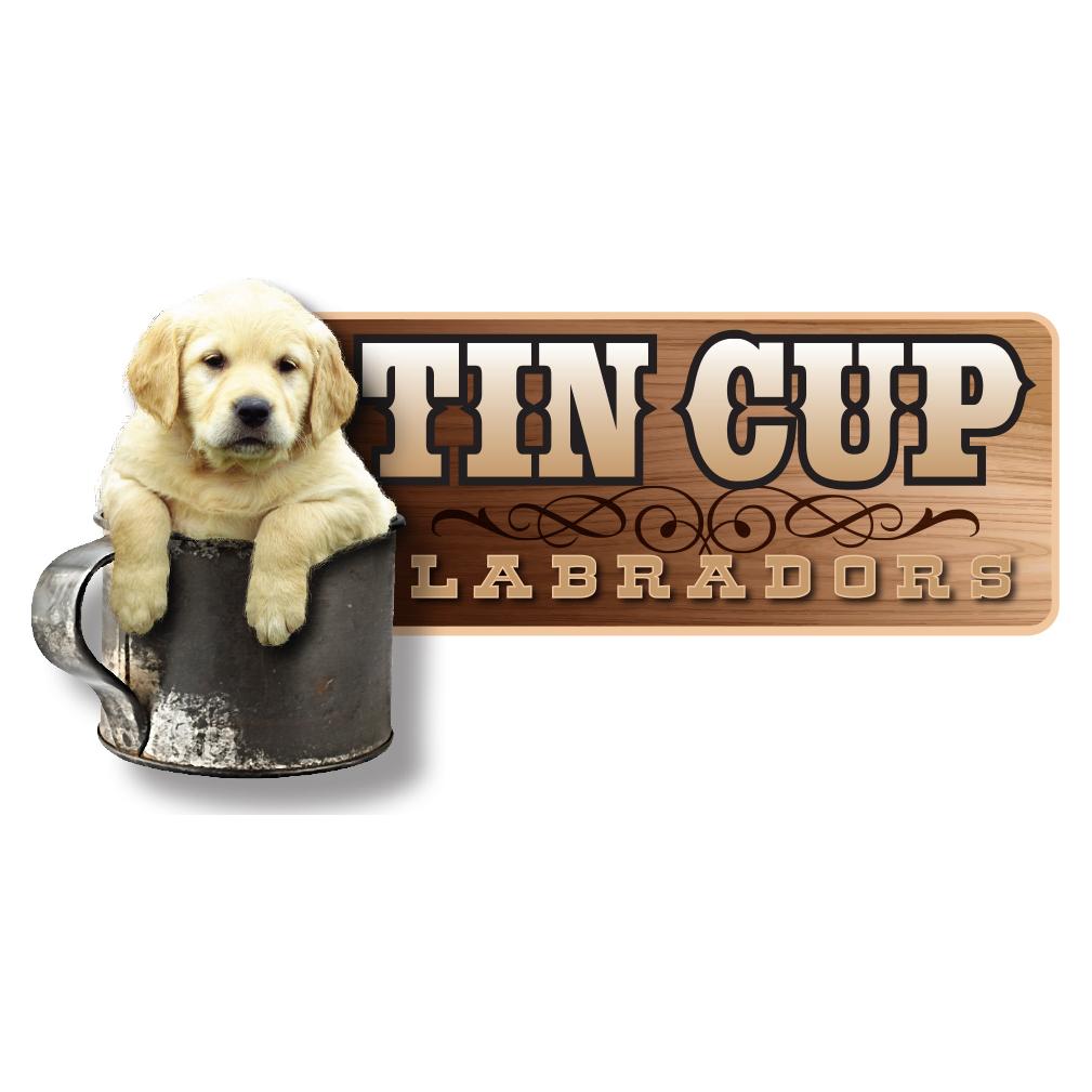 Tin Cup Labradors