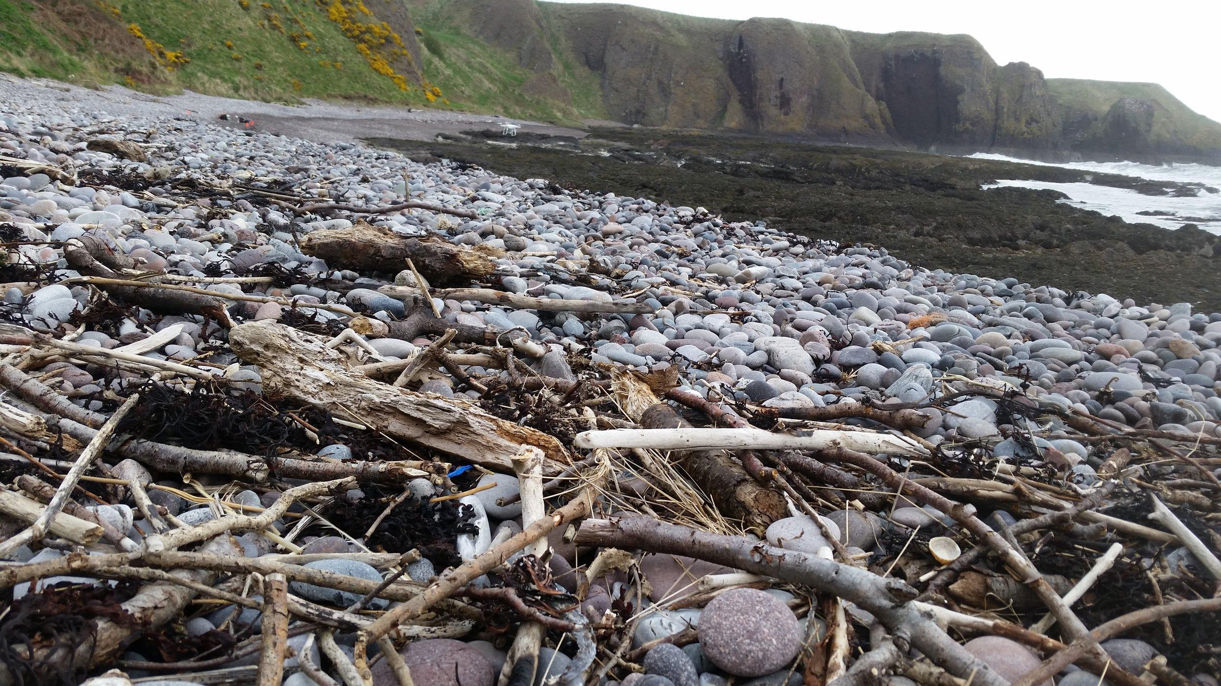 Plastic debris trapped along the strandline in the prison like valley.